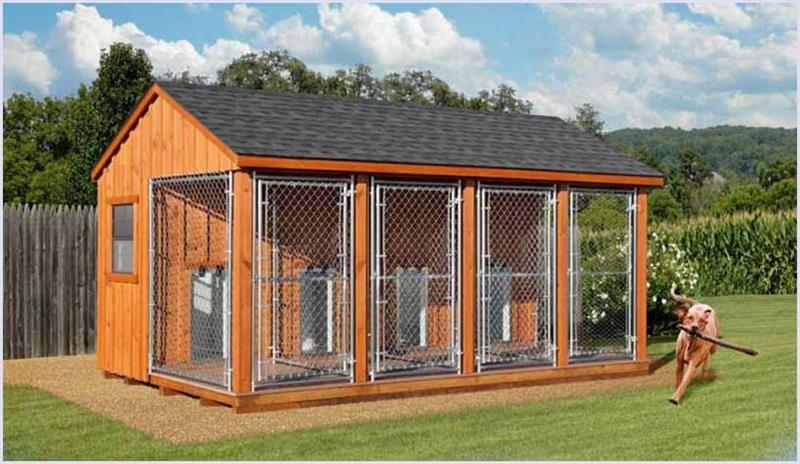 Dog Kennels For Rent